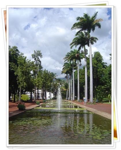 450px-Saint-Denis_Reunion_Jardin_de_lEtat_dsc07300.jpg
