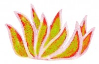 Fleur 004 pf.jpg