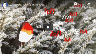 Screenshot_2021-01-04 Véronique Massenot.png