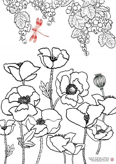 Coloriage Groseilles Coquelicots.jpg